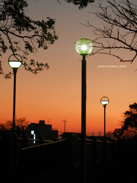 lightyuhi1-5hn.jpg
